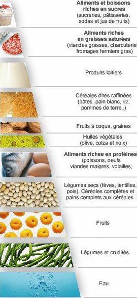impact aliment destiné a des fins médicale